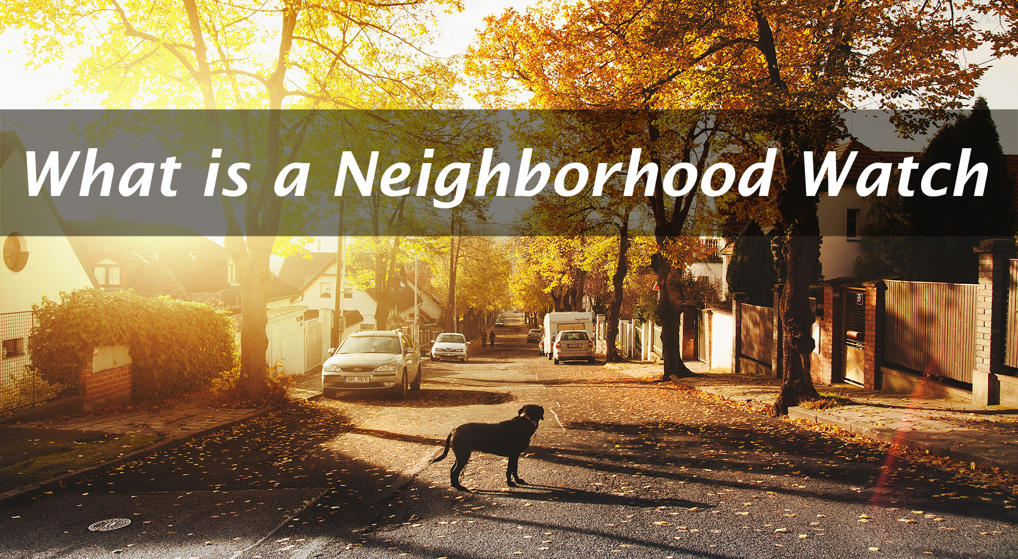 What is a Neighborhood Watch